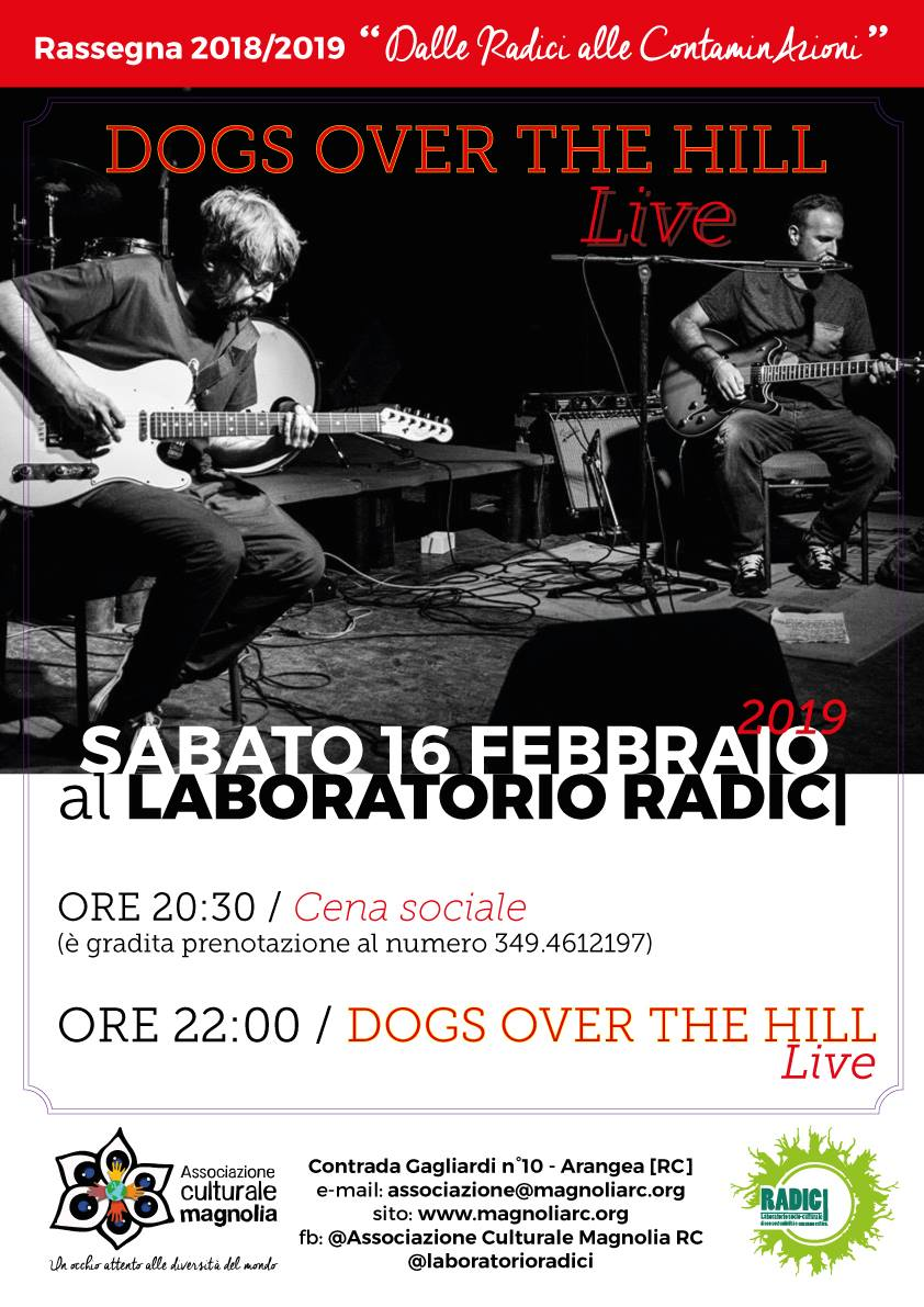 Dogs Over The Hill Live